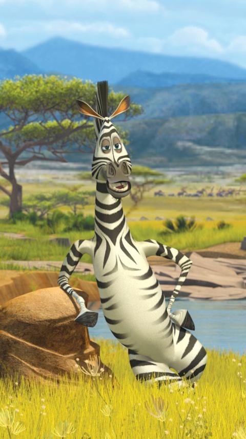 Картинка зебра из Мадагаскара (Zebra from madagascar) 480x854 скачать