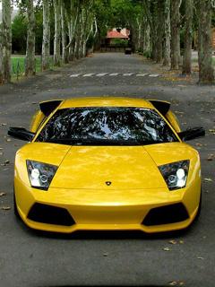 Картинка желтый Ламборгини 240x320