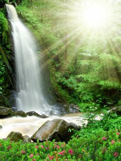 Картинка waterfall 240x320