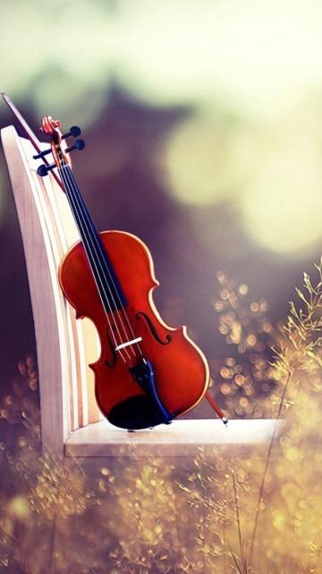 Картинка красивая скрипка 360x640
