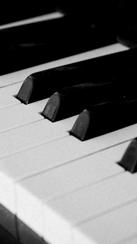 Картинка клавиши пианино 480x854