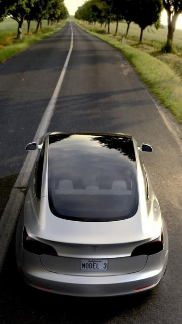 Картинка Тесла Model 3, вид сзади, дорога, деревья, трава, серый, стопы 360x640 для смартфона