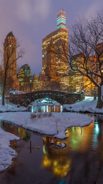 Картинка Центральный парк, отражение, небоскребы, снег, деревья, Gapstow Bridge, зима, утки, Нью-Йорк, ночь, Соединенные Штаты, озеро, зеркало, США, фонарные столбы, ветки 360x640 на телефон