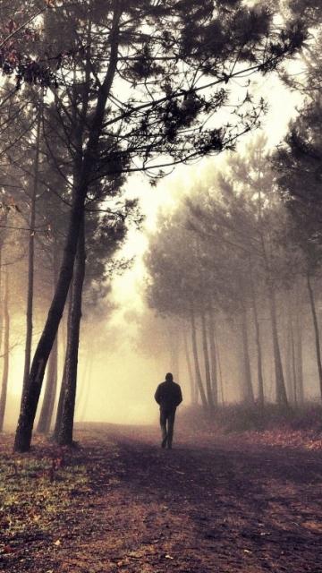 Мужчина, дорога, утро, в одиночку, лес, туман, деревья 360x640 на телефон