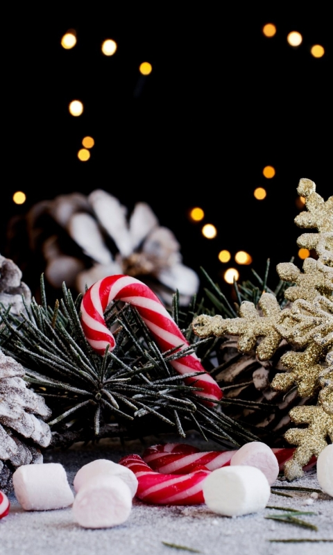 decor, christmas, new year, needles, holiday, pine cones, candy, snowflake 480x800 обои