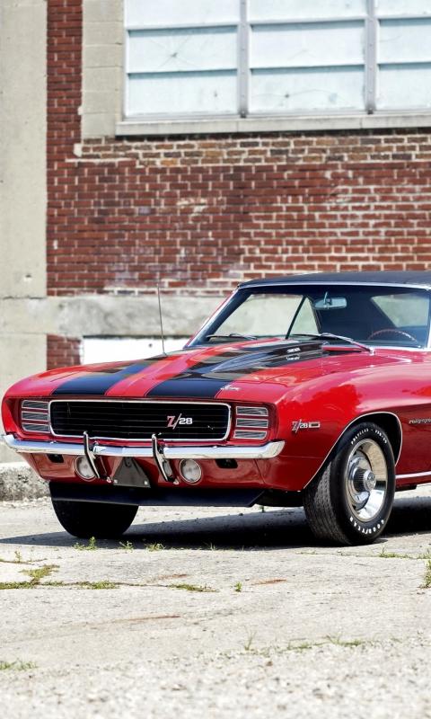Camaro, 1969, Chevrolet, шевроле, камаро, автомобиль, США
